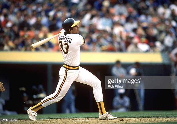 Jose Canseco of the Oakland Athletics bats during a 1986 season game at Oakland Coliseum in Oakland California Jose Canseco played for the Oakland...
