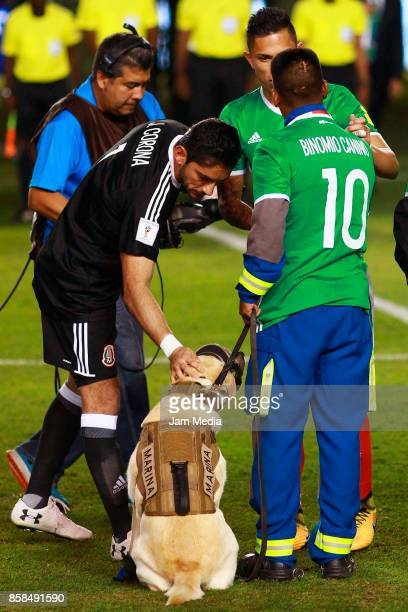 Jose de Jesus Corona goalkeeper of Mexico touches Frida a rescuer dog from the Navy prior the match between Mexico and Trinidad Tobago as part of the...
