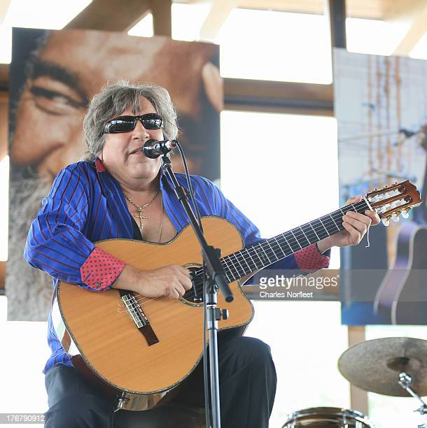 Jose Feliciano performs during the Richie Havens Memorial Celebration and Aerial Scattering pf Ashes at Bethel Woods Art Center on August 18 2013 in...