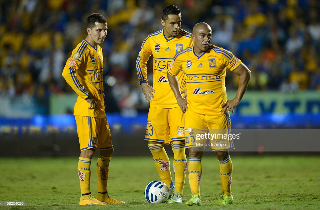 Tigres UANL v Queretaro - Apertura 2014 Liga MX : News Photo