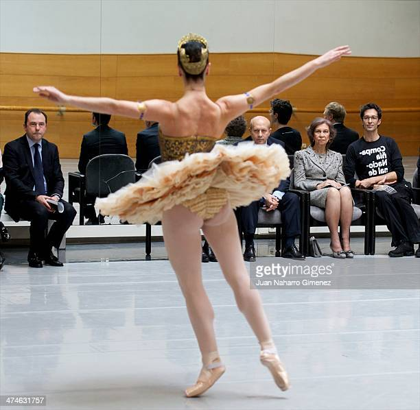 Jose Ignacio Wert Queen Sofia of Spain and Jose Carlos Martinez visit the National Dance Company at National Dance Company sede on February 24 2014...