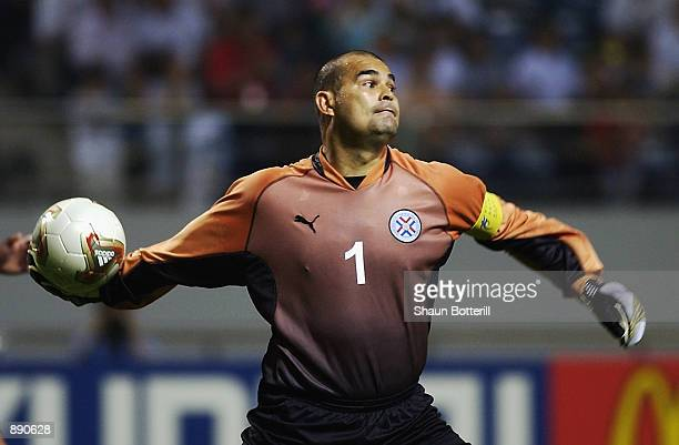 Jose Luis Chilavert of Paraguay in action during the FIFA World Cup Finals 2002 Group B match between Slovenia and Paraguay played at the...