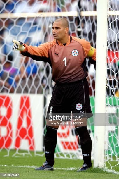 Jose Luis Chilavert Paraguay goalkeeper