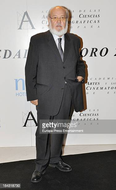 Jose Luis Cuerda attends Gold Medal Award photocall on October 17 2012 in Madrid Spain