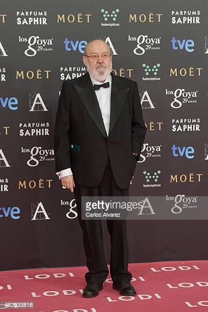 Jose Luis Cuerda attends Goya Cinema Awards 2014 at Centro de Congresos Principe Felipe on February 7 2015 in Madrid Spain