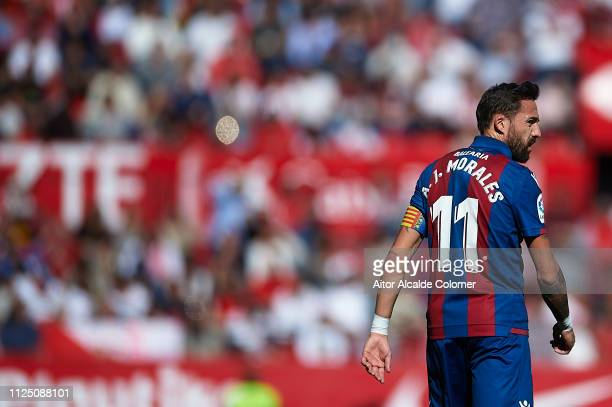 Jose Luis Morales of Levante UD looks on during the La Liga match between Sevilla FC and Levante UD at Estadio Ramon Sanchez Pizjuan on January 26...