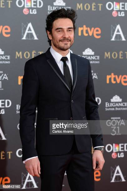 Jose Manuel Seda attends Goya Cinema Awards 2017 at Madrid Marriott Auditorium on February 4 2017 in Madrid Spain