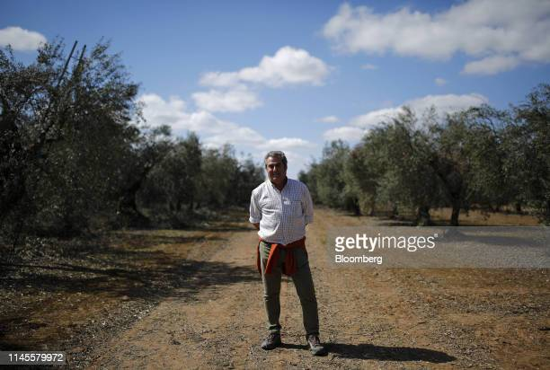 Jose Maria Bohorquez olive producer poses for a photograph in an olive grove near to Moron Air Base in Arahal Spain on Wednesday March 13 2019 The...