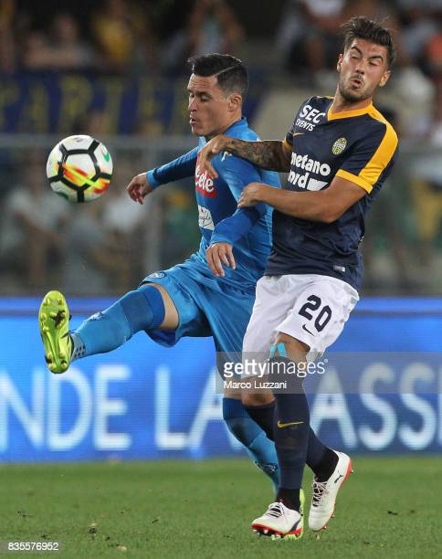 Jose Maria Callejon of SSC Napoli competes for the ball with Mattia Zaccagni of Hellas Verona during the Serie A match between Hellas Verona and SSC...