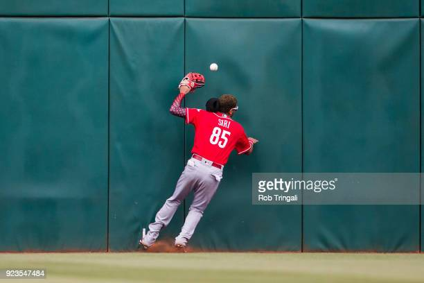 Jose Siri of the Cincinnati Reds bats slams hard into the wall on a ball hit by Richie Shaffer of the Cleveland Indians in the 8th inning during a...
