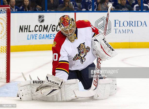 Jose Theodore of the Florida Panthers against the Tampa Bay Lightning at the Tampa Bay Times Forum on January 29 2013 in Tampa Florida
