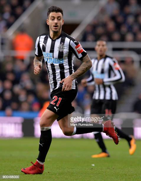 Joselu of Newcastle United in action during the Premier League match between Newcastle United and Brighton and Hove Albion at St James Park on...
