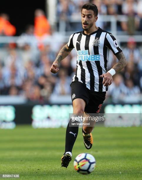 Joselu of Newcastle United is seen during the Premier League match between Newcastle United and West Ham United at St James Park on August 26 2017 in...