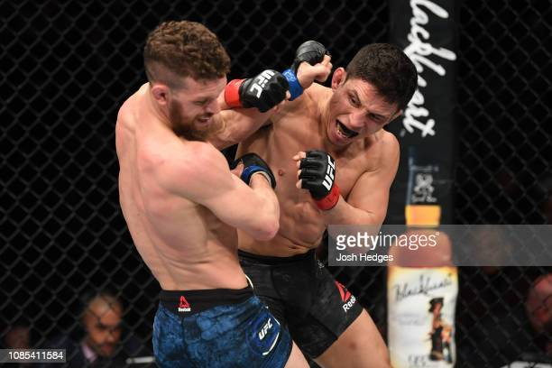 Joseph Benavidez punches Dustin Ortiz in their flyweight bout during the UFC Fight Night event at the Barclays Center on January 19, 2019 in the...