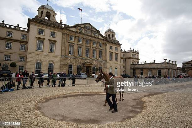 Joseph Murphy shows his horse Electric Cruise at the 1st inspection on the day before the start of the Badminton Horse Trials on May 06 2015 in...