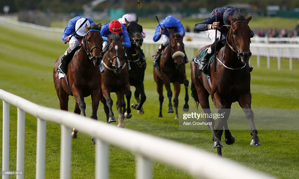 Curragh Races : News Photo