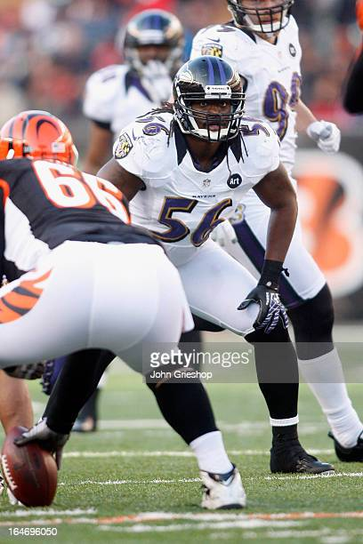 Josh Bynes of the Baltimore Ravens lines up at linebacker during the game against the Cincinnati Bengals at Paul Brown Stadium on December 30, 2012...