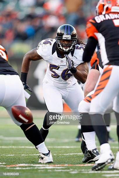 Josh Bynes of the Baltimore Ravens rushes the quarterback during the game against the Cincinnati Bengals at Paul Brown Stadium on December 30, 2012...