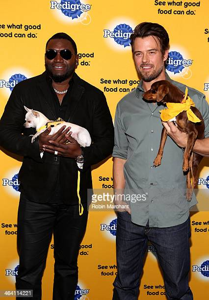 Josh Duhamel And David Ortiz Team Up With Pedigree To Launch New Storytelling Campaign At 2014 Sundance Film Festival at Haven at The Sky Lodge on...