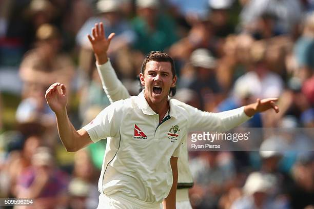 Josh Hazlewood of Australia appeals for the wicket of Tom Latham of New Zealand during day one of the Test match between New Zealand and Australia at...