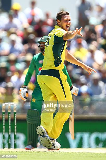 Josh Hazlewood of Australia appeals successfully for the wicket of Mohammad Hafeez of Pakistan during game three of the One Day International series...