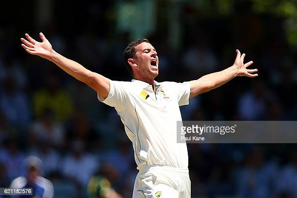 Josh Hazlewood of Australia appeals unsuccesfully for a wicket during day three of the First Test match between Australia and South Africa at the...