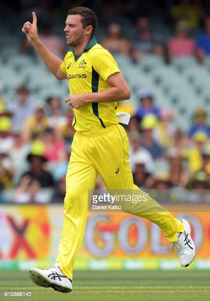 Josh Hazlewood of Australia celebrates after taking a wicket during game four of the One Day International series between Australia and England at...