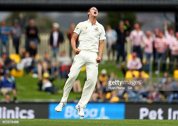 Josh Hazlewood of Australia celebrates after taking the wicket of Faf du Plessis of South Africa during day one of the Second Test match between...