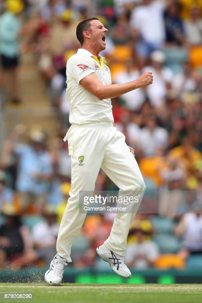 Josh Hazlewood of Australia celebrates after taking the wicket of Joe Root of England during day four of the First Test Match of the 2017/18 Ashes...