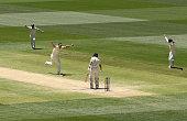 adelaide australia josh hazlewood australia celebrates