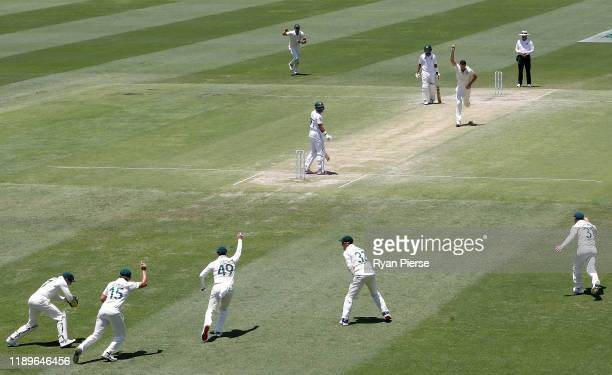 Josh Hazlewood of Australia celebrates after taking the wicket of Iftikhar Ahmed of Pakistan during day four of the 1st Domain Test between Australia...