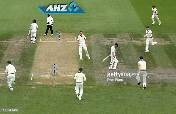 Josh Hazlewood of Australia celebrates after taking the wicket of Brendon McCullum of New Zealand during day three of the Test match between New...