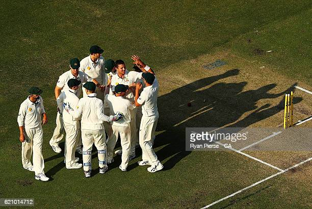 Josh Hazlewood of Australia celebrates after taking the wicket of Hashim Amla of South Africa during day two of the First Test match between...