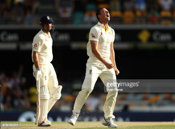Josh Hazlewood of Australia celebrates after taking the wicket of Alastair Cook of England during day three of the First Test Match of the 2017/18...