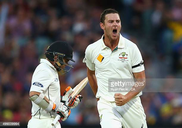 Josh Hazlewood of Australia celebrates after taking the wicket of Tom Latham of New Zealand during day two of the Third Test match between Australia...