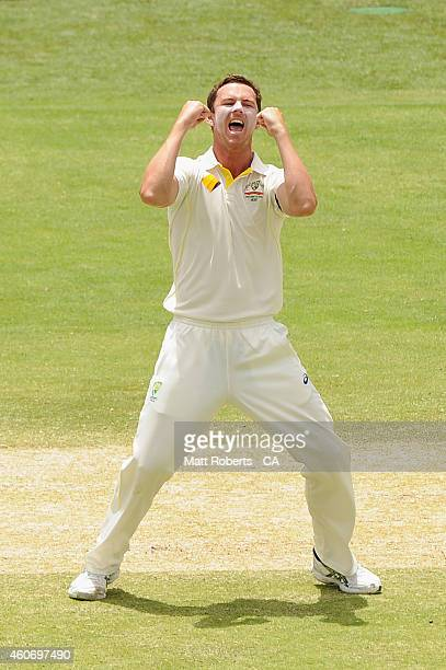Josh Hazlewood of Australia celebrates dismissing Mahendra Singh Dhoni of India during day four of the 2nd Test match between Australia and India at...