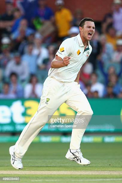 Josh Hazlewood of Australia celebrates dismissing Martin Guptill of New Zealand during day two of the Third Test match between Australia and New...