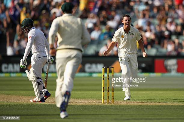 Josh Hazlewood of Australia celebrates dismissing Quinton de Kock of South Africa during day one of the Third Test match between Australia and South...
