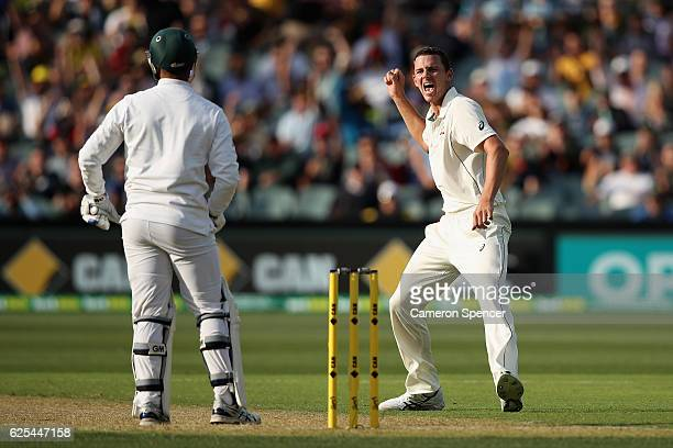 Josh Hazlewood of Australia celebrates dismissing Vernon Philander of South Africa during day one of the Third Test match between Australia and South...