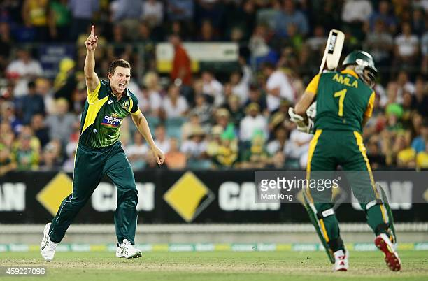 Josh Hazlewood of Australia celebrates taking the wicket of Hashim Amla of South Africa during game three of the One Day International Series between...