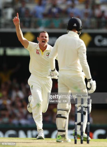 Josh Hazlewood of Australia celebrates taking the wicket of James Vince of England during day three of the First Test Match of the 2017/18 Ashes...