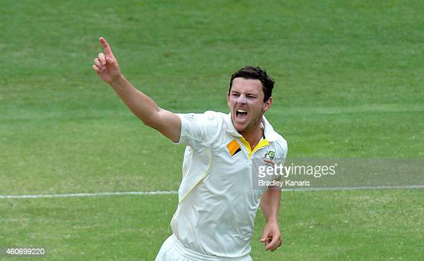 Josh Hazlewood of Australia celebrates taking the wicket of Cheteshwar Pujara of India during day four of the 2nd Test match between Australia and...