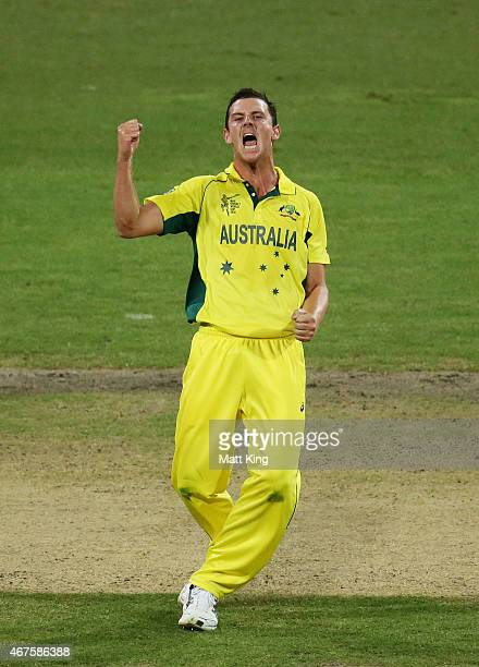 Josh Hazlewood of Australia celebrates taking the wicket of Shikhar Dhawan of India during the 2015 Cricket World Cup Semi Final match between...