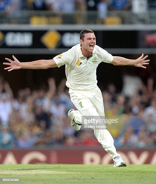 Josh Hazlewood of Australia celebrates taking the wicket of Younis Khan of Pakistan during day two of the First Test match between Australia and...