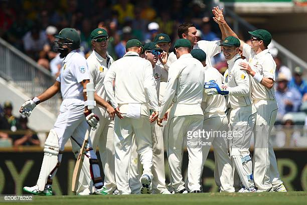 Josh Hazlewood of Australia celebrates the wicket of Hashim Amla of South Africa during day one of the First Test match between Australia and South...