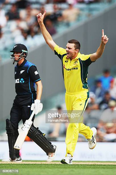 Josh Hazlewood of Australia celebrates the wicket of Luke Ronchi of the Black Caps during the One Day International match between New Zealand and...