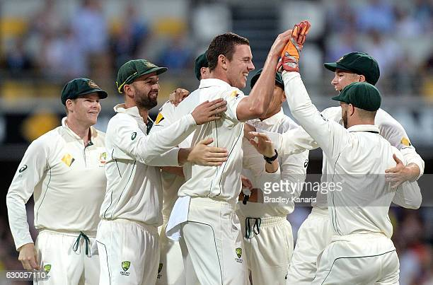 Josh Hazlewood of Australia celebrates with team mates after taking the wicket of Younis Khan of Pakistan between Australia and Pakistan at The Gabba...