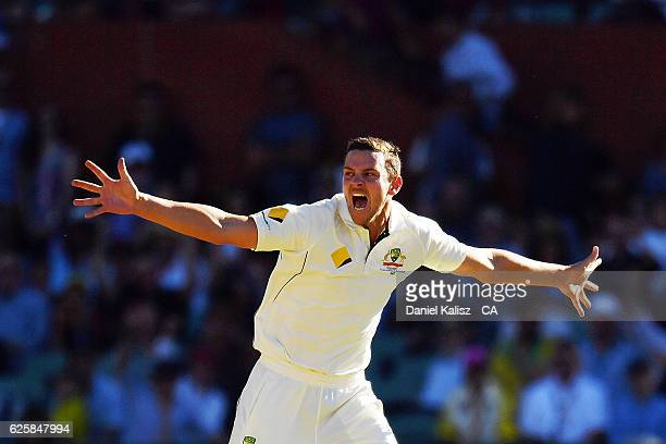 Josh Hazlewood of Australia reacts after taking the wicket of Hashim Amla of South Africa during day three of the Third Test match between Australia...