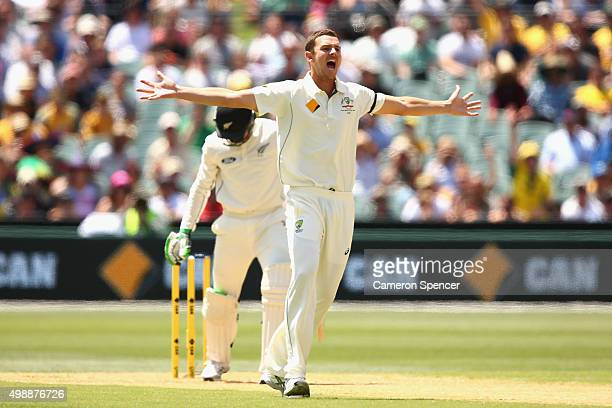 Josh Hazlewood of Australia successfuly appeals lbw for the wicket of Martin Guptill of New Zealand during day one of the Third Test match between...