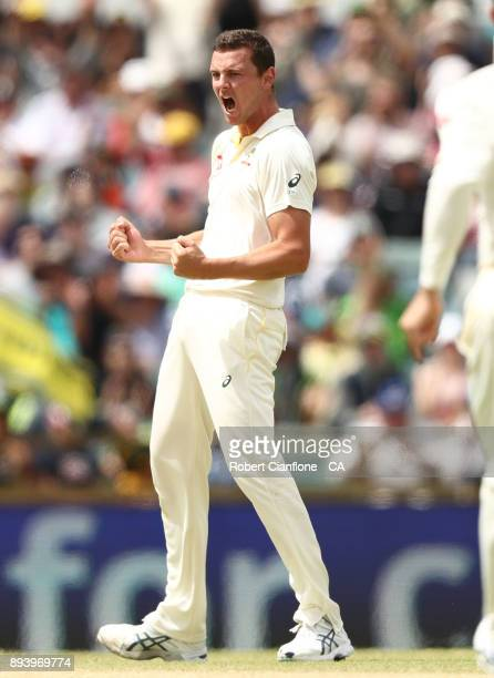 Josh Hazlewood of Australia takes the wicket of Alastair Cook of England during day four of the Third Test match during the 2017/18 Ashes Series...